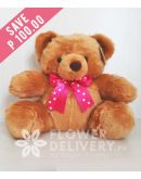 14 inches Chubby Teddy Bear