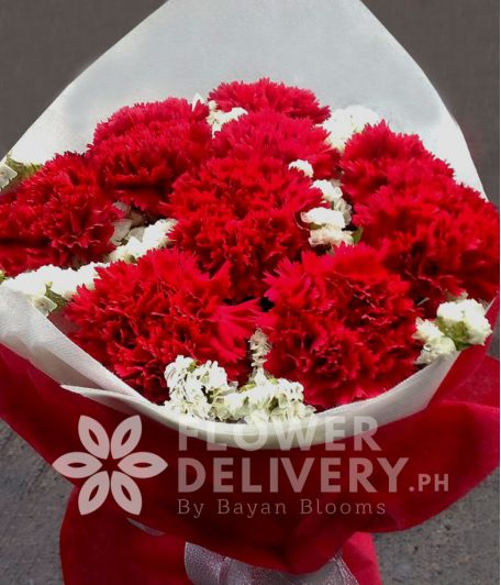 1 Dozen Red Carnations
