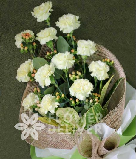 1 Dozen White Carnations
