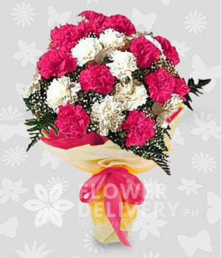 1 Dozen Pink and White Carnations
