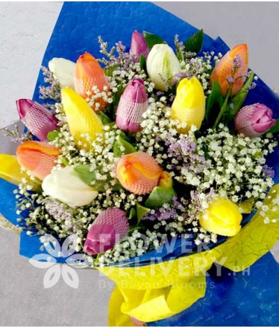 16 pcs. Rainbow Mixed Tulips