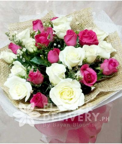 2 Dozen Mixed Pink and White Roses