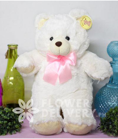 14 inches Teddy Bear