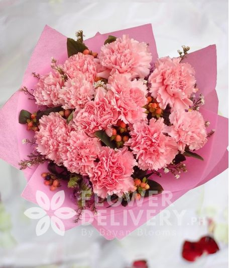 1 Dozen Pink Carnations