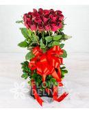 2 Dozen Roses in a Round Box
