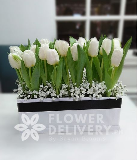 20 White Tulips in a Box
