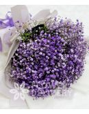 A Charming Bouquet of Purple Gypsophila