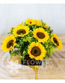 Charming Box of Sunflowers with Solidago