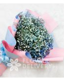 Lovely Blue Gypsophila